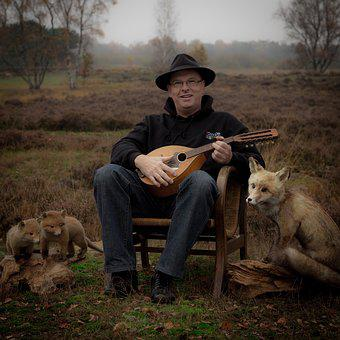 Man, Mandolin, Hat, Fuchs, Heide, Music, Autumn, Scene