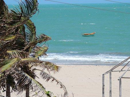 Beach, Piauí, Coconut Tree, Boat, Mar, Palm Tree