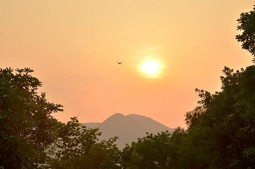 Sunset, Return Of The Bird