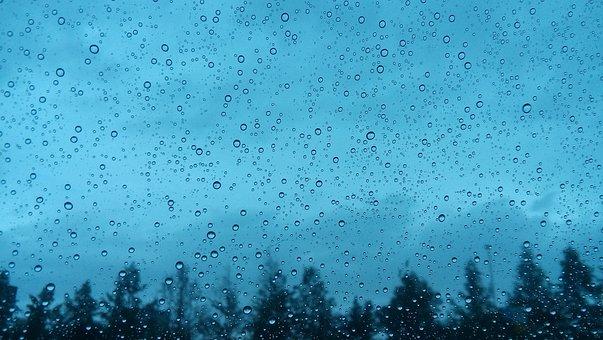 Rain, Hurricane, Afternoon, Sad, Water, Sky, Tree