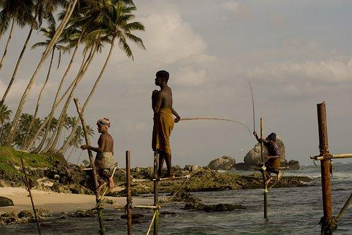 Stick Fishermen, Sri Lanka, Fishing, Ocean, Stick, Wave
