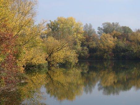 Altbach, Age Neckararm, Autumn