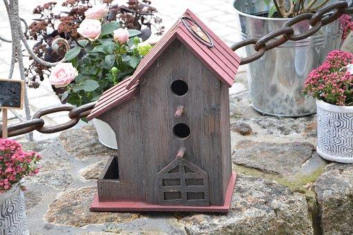 House Bird, Nest, Nest Box, Birds, Manger, Bird Feeder