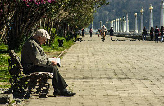 Man, Bench, The Old Man, Book