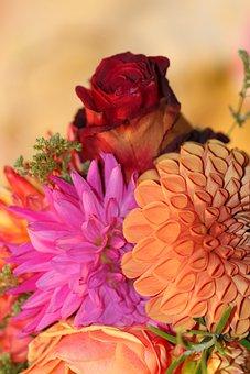 Bouquet, Colorful, Birthday, Birthday Card, Greeting