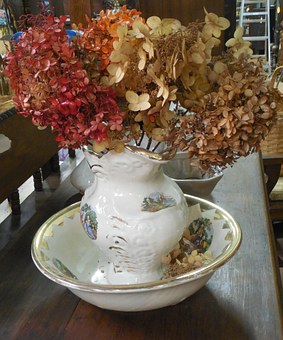Dried, Ceramic, Bowl, White, Dry, Red, Leaves, Plant