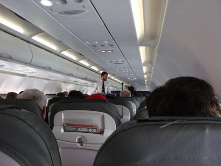 Travel, Air, Flight, Passenger, People, Cabin