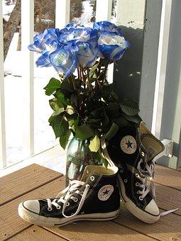Roses, Bouquet, Blue Rose, Shoes, Converse, Flower