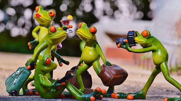 Frogs, Group, Funny, Travel, Luggage, Holdall, Go Away