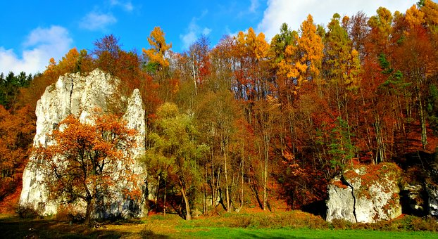 Paternity National Park, Poland, Landscape, Nature