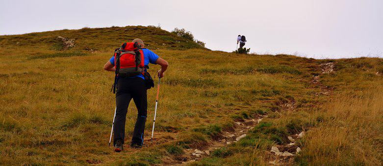 Trail, Hiking, Ascent, Walk, Mountain, Baldo, Italy
