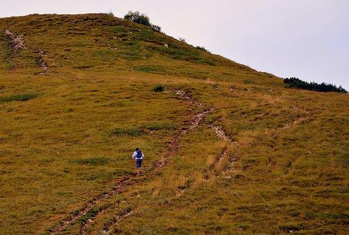 Trail, Hiking, Ascent, Walk, Mountain, Baldo, Italy