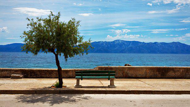 Bench, Tree, Sea, Coast, Beach, Croatia, Sucuraj