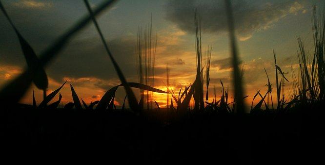 Sunset, Solar, Nature, Clouds, Peace, Turkey, Light