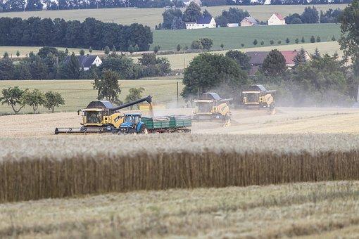 Agriculture, Harvest, Combine Harvester, Saxony