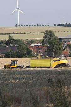 Agriculture, Harvest, Mowing, Barley, Saxony