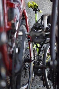 Cycle, Wheel, Spokes, Bicycle Wheels, Bikes, Tires