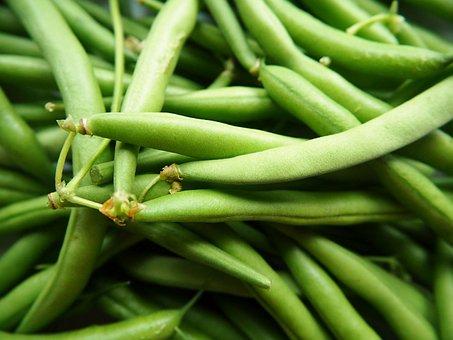 Green Beans, Vegetables, Garden, Bio, Plant, Eat