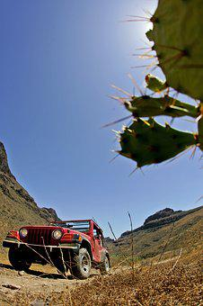 Jeep, Mountain, Offroad, Landscape, Cactus, Adventure