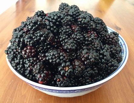 Blackberries, Fruit, Food, Fresh, Organic, Ripe, Juicy