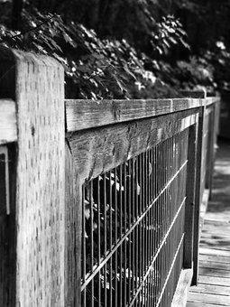 Ramp, Barrier, Bridge, Wood, Passage, Stilt, Path