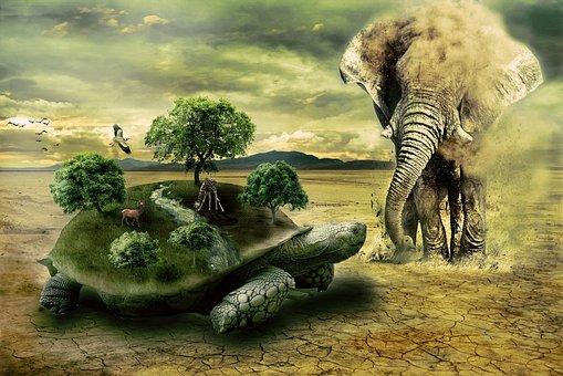 Turtle, Elephant, Animal, Wild, Nature, Sand, Dust
