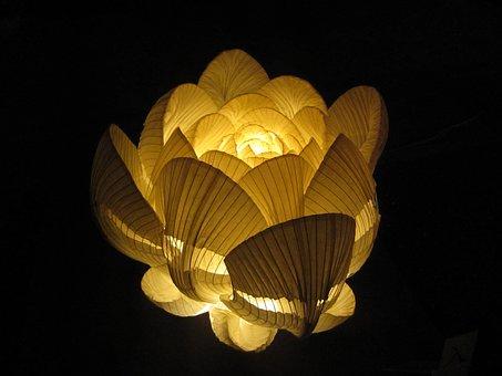 Flowers, Lamp, Japanese Paper, Mino