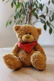 Teddy, Teddy Bear, Bear, Toys, Stuffed Animal, Cute