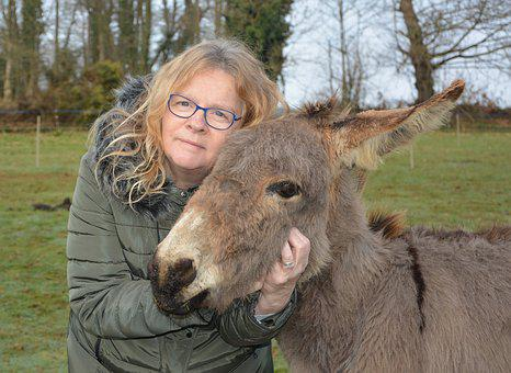 Donkey, Woman, Portrait, Complicity, Hug, Accomplices