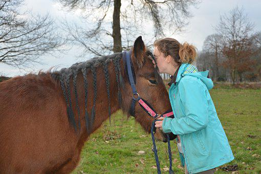 Kiss, Horse, Girl, Young Woman, Tenderness, Affection