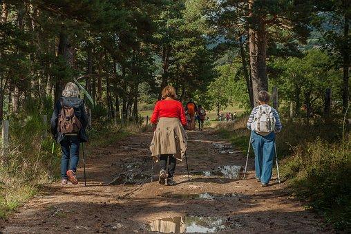 Hikers, Walkers, Path, Hiking