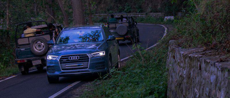 Car, Audi, Forest, Scene, Driver, Family, Travel