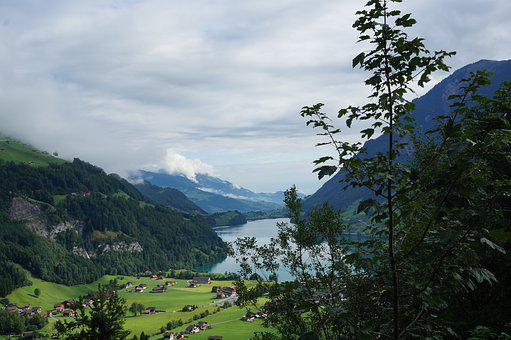 Swiss, The Grimsel Pass, In The Foreground