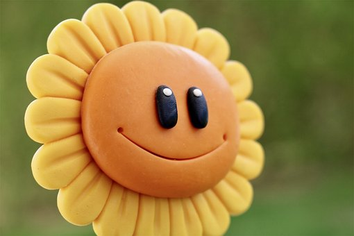 Funny, Fun, Good Mood, Sun Flower, Flower, Sun, Face