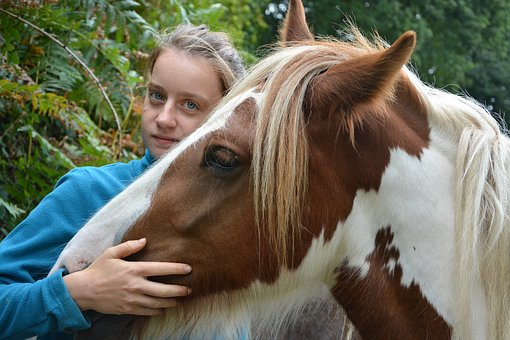 Horse, Girl, Young Woman, Hug Tenderness, Complicity
