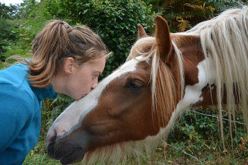 Kiss, Horse, Girl, Young Woman, Complicity, Affection