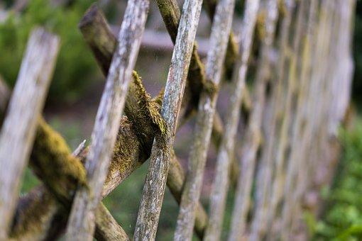 Fence, Wood Fence, Moss, Old, Fence Old, Moosbedeckt