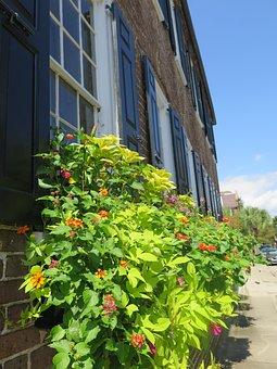 Homes, Flower, United States