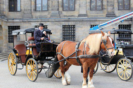 Horse, Cart, Lifestyle, Outdoors, Horse-drawn Carriage