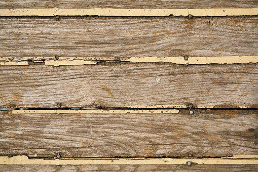 Wood-fibre Boards, Texture, Pattern, Tree, Nobody