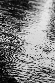 Puddle, Water, Rain, Drops