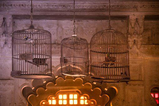 Palace, Udaipur, Rajasthan, Birds, Cage, Antique, Old