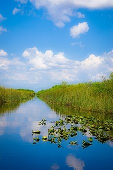 Miami, Usa, Everglades, River, Water, Sky, Mirroring