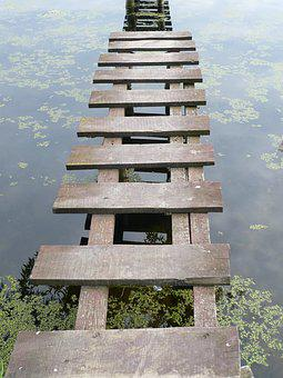 Pond, River, Boat, Summer, Marina, Tina, Grass
