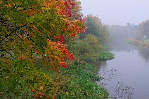 The Fog, Landscape, Morning, Poland, Nature