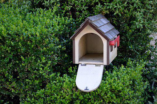Bird House, Garden, Bird, Nature, House, Natural