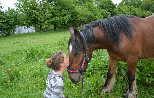 Kiss, Kisses, Horse, Girl, Young Woman, Tenderness
