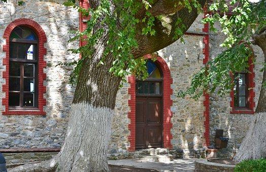 Tree, Building, Nei Pori, Platamonas, Greece