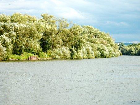 River, River Landscape, Water, Flow, Nature, Scenic