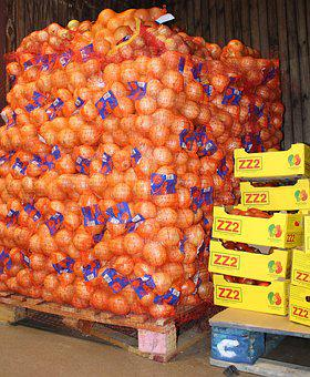 Food, Wood Pallets, Industry, Wholesale, Oranges
